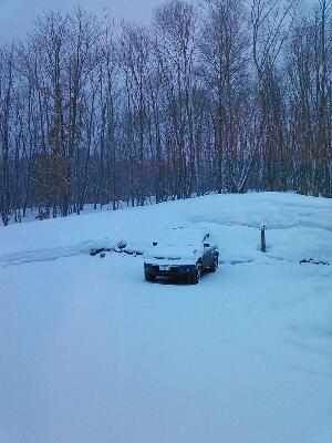 雪になりました it is snow