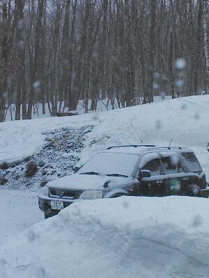 やはり雪に・・・