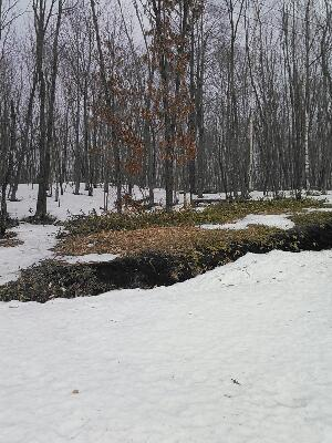 進む雪解け