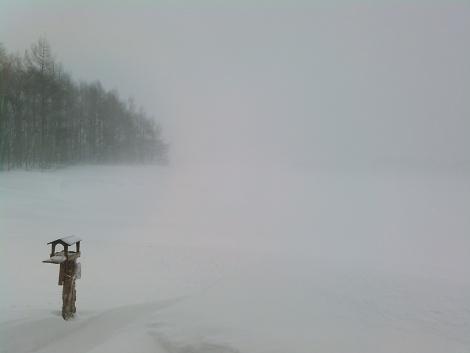 視界300m Visibility 300m