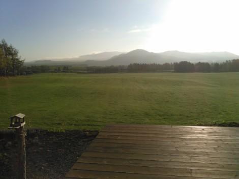今朝の牧草地