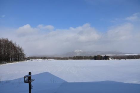やっと冬らしい景色になりました